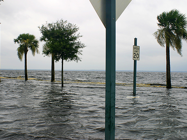 Ocean occupies Florida roadways, palm trees road signs looking out of place