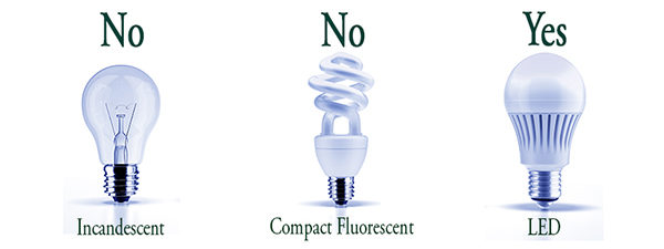 Pick the LED bulb to save money and energy!