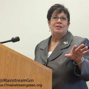 Picture of Dana Johnston, Mainstream Green president, at podium